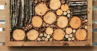 16+ Shocking Woodworking Tips Ideas